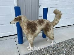 Antique Hunting Store Display Dog Early 1900s Full Size Awesome Display