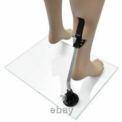Mannequin Vidaxl Femmes Avec Support Adulte Femelle Pleine Taille Sans Tête